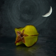 starfruit-starfuit-night