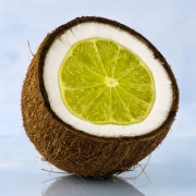 lime-in-the-coconut