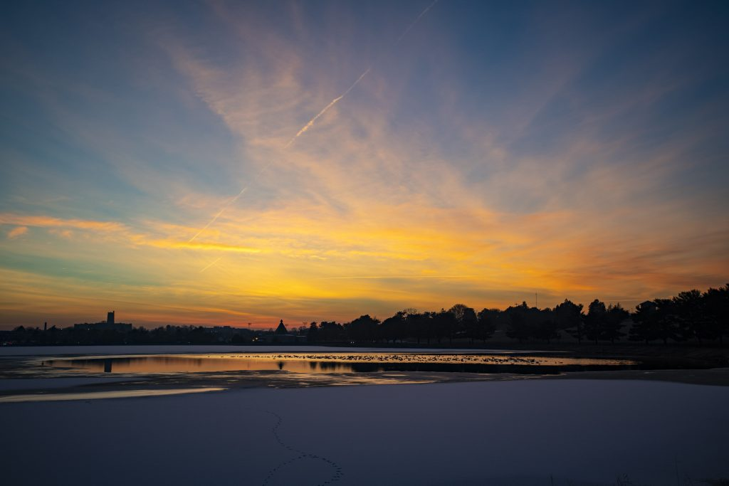geese-sunset-1-1024x683.jpg